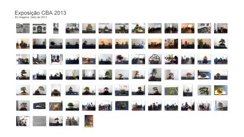 Exposição CBA 2013