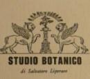 Studio Botanico